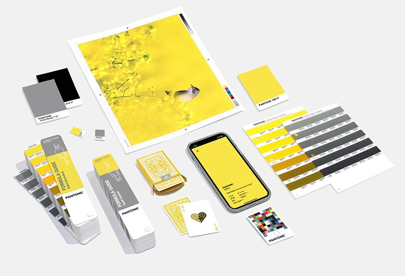 Pantone chose two colors for 2021, gray and illuminating yellow for home design