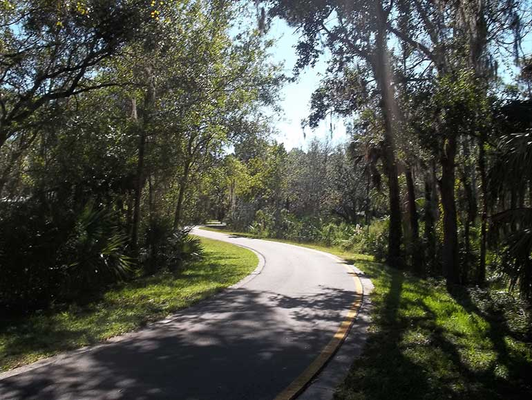 winter-hiking-destinations-in-the-tampa-bay-area-Upper Tampa Bay Park